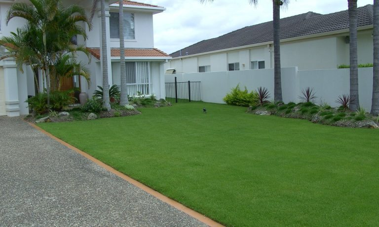 Zoysia Grass large suburban house with palm threes and a front garden