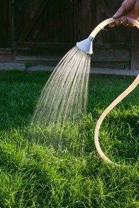 Protect Lawn from Sun
