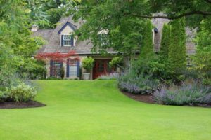 Beautiful lawn and garden in front of house