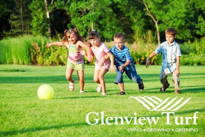 Childcare Centre ad1 Glenview Turf