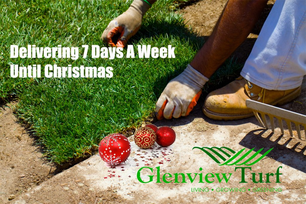 Delivering Lawn Turf Grass 7 Days A Week