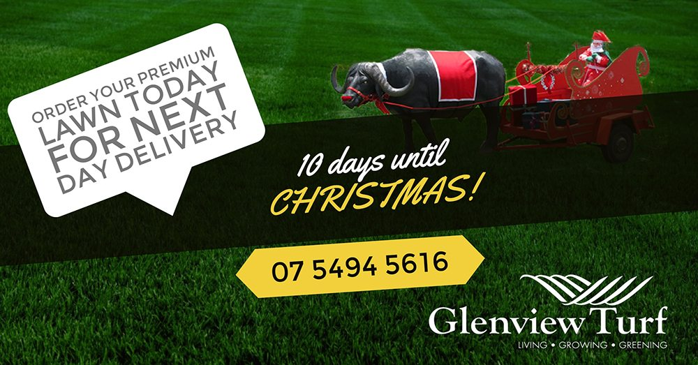 10 Days Until Christmas Glenview Turf