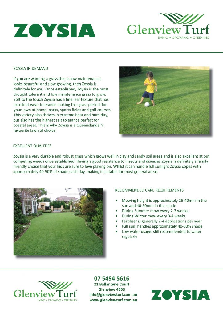Zoysia Lawns - If you want the best 2