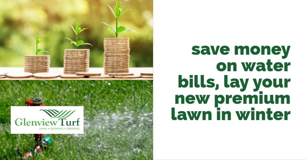 Lay your lawn in Winter to save on water bills