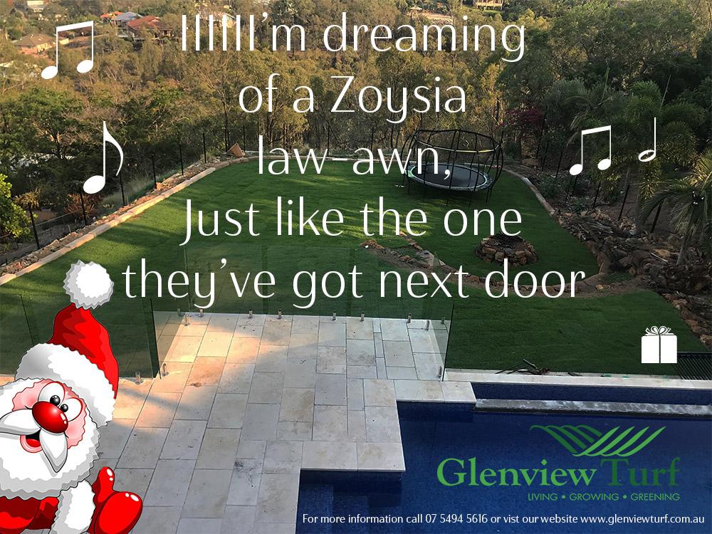 Zoysia Glenview Turf Santa All i want for Xmas2
