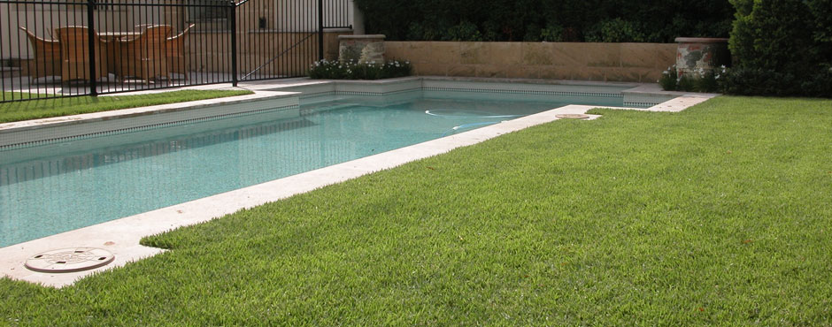Empire Zoysia Grass Turf Lawn Glenview Turf Pool
