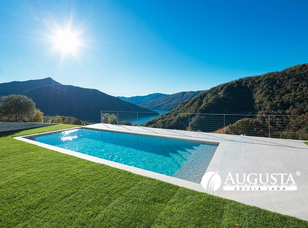Augusta Zoysia Grass Lawn Turf Pool 2e - Glenview Turf