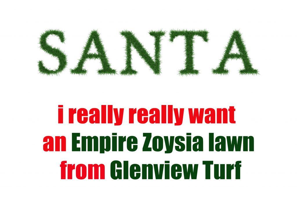 Santa-i-want-an-Empire-Zoysia-lawn