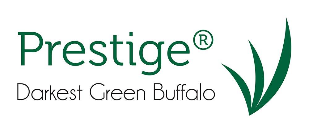 Prestige Darkest Green Buffalo Turf Logo