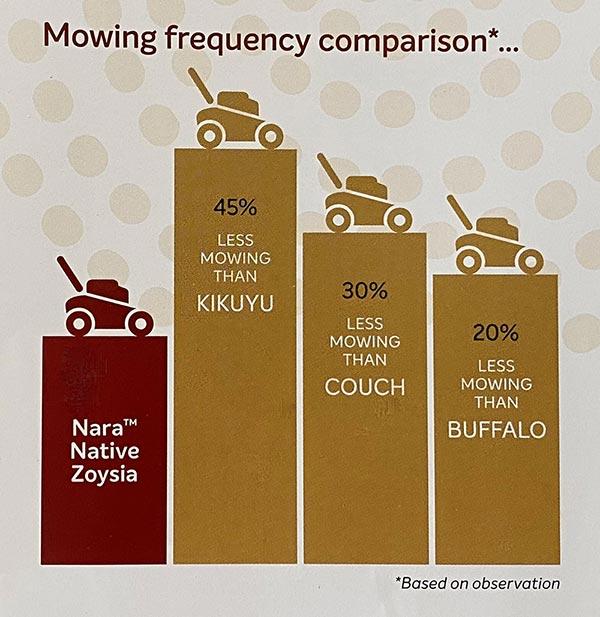 Nara-Native-Zoysia-Mowing-Frequency-Comparison-w-Glenview-Turf