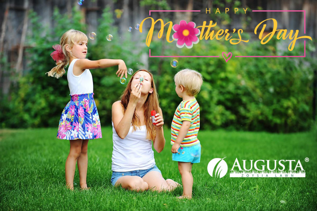Happy Mothers Day Glenview Turf Augusta Zoysia Grass Lawn Family 2e1 2020