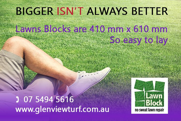 Lawn-Block-Turf-Repair-410mm-x-610mm-Pieces-of-Turf-Glenview-Turf