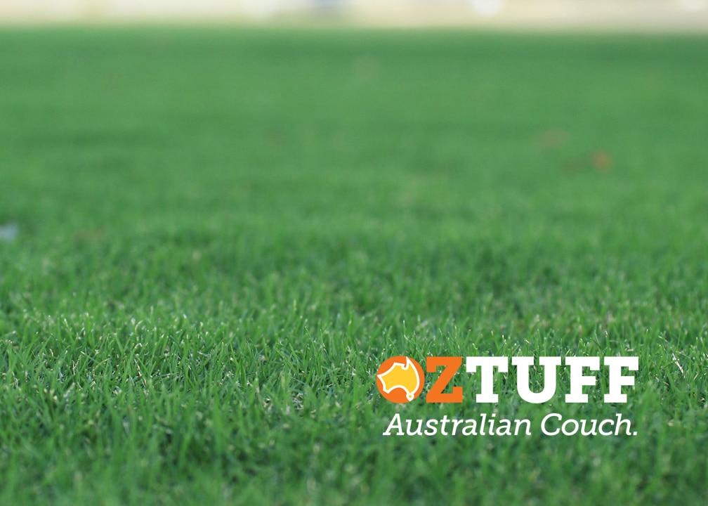Oz Tuff Australian Couch Sports Turf 2