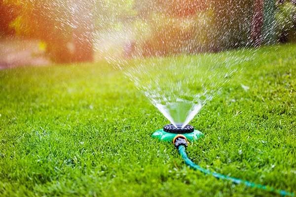Watering-Lawn-0810