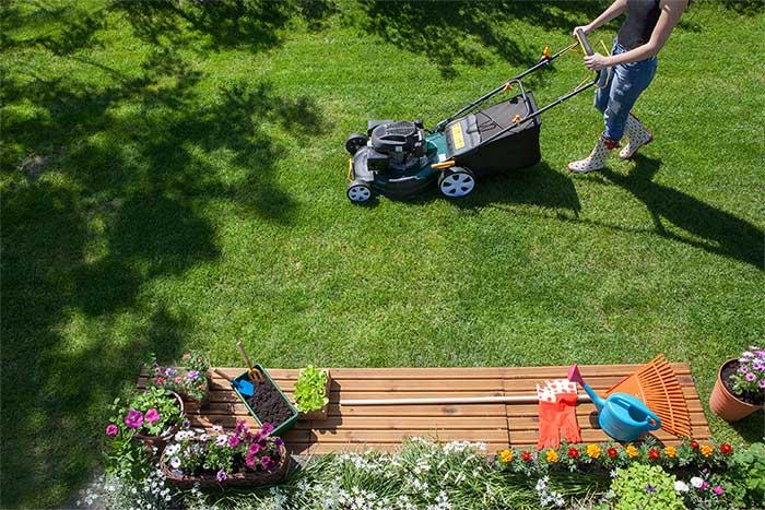 lawn mowing woman gardening