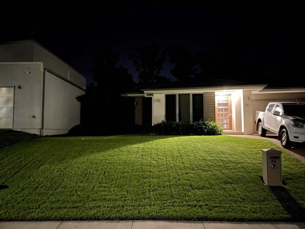 Wintergreen Couch Turf Grass Lawn At Night Glenview Turf
